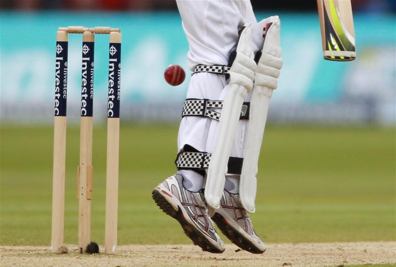 Cricket stumps Cricket Cricket stumps