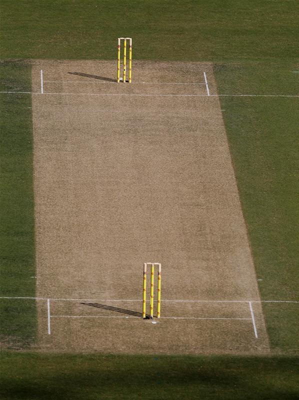 Cricket Wicket Cricket Cricket Wicket